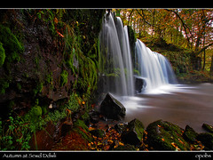 Autumn at Scwd Ddwli (opobs) Tags: morning autumn wet water southwales wales waterfall rocks 1000 wfc pontneddfechan eow neathvalley welshflickrcymru opobs scwdddwli michaeljstokesawpf