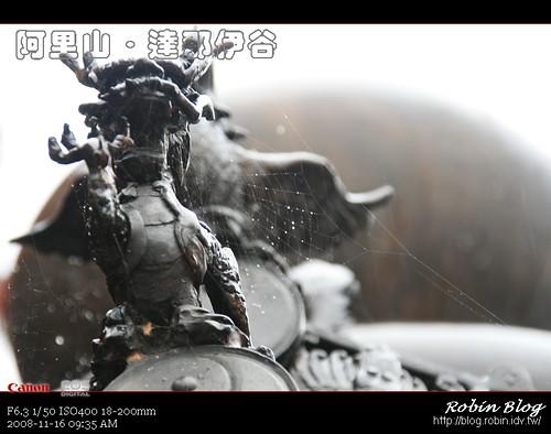 你拍攝的 20081116數位攝影_阿里山之旅230.jpg。