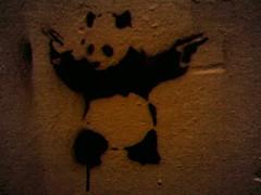 austin find from d3 (florajasmine) Tags: austin graffiti stencil panda guns florajasmine