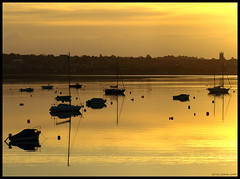 Still morning (ExeDave) Tags: uk morning november autumn england yellow sunrise river landscape boats dawn estuary explore devon gb yachts soe exmouth waterscape exe starcross eastdevon interestingness500 exeestuary teignbridge