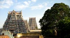 Srirangam_09 (m_spark) Tags: architecture temple tamilnadu southindia srirangam ranganathaswamy templetown vaishnavism viapixelpipe