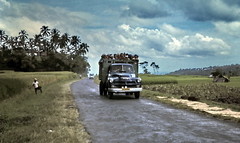gm_01212 Bali Besakih Road 1975 (CanadaGood) Tags: people bali color colour bus tree green analog truck indonesia person asia pavement farm sli