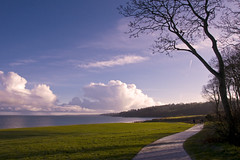 Late Autumn Sun (Etrusia UK) Tags: uk sea tree art water clouds nikon zoom unitedkingdom path wideangle northernireland ni pictureperfect ulster d300 nikkorlens codown 18200mm nikonlens crawfordsburncountrypark vrlens nikon18200mm nikkor18200mm nikond300 camhino