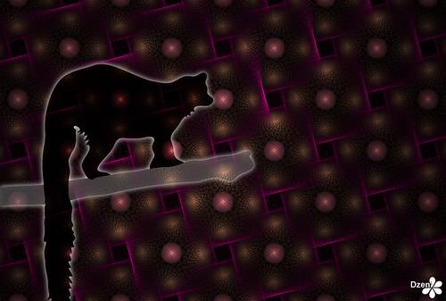 Lively Lemur