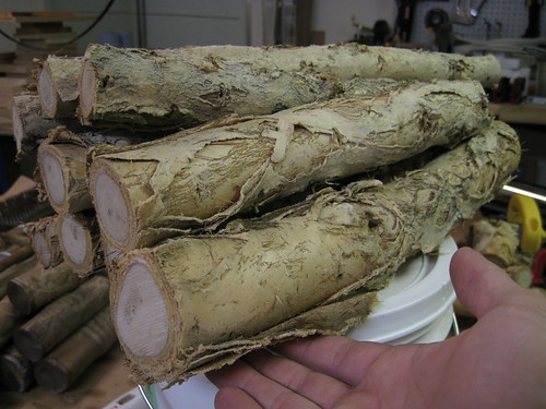paperbark limbs cut into shorter lengths