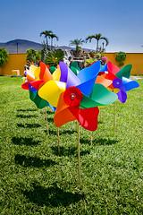 Rehiletes (chblet) Tags: grass mxico colores pinwheel morelos rehilete 100 rehiletes reguilete chablet colorfullaward colorsinourworld