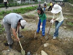 學員們揮汗將土回填,這個步驟其實是為了鬆土。