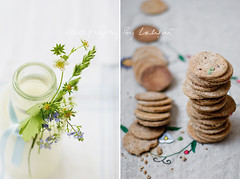 Fresh Milk & Wholegrain Crackers (Laksmi W) Tags: stilllife barley milk bottle diptych grain stack rye vegetarian wildflowers dairy fiber simple oats crackers bran spelt foodphotography wholegrain flaxseed
