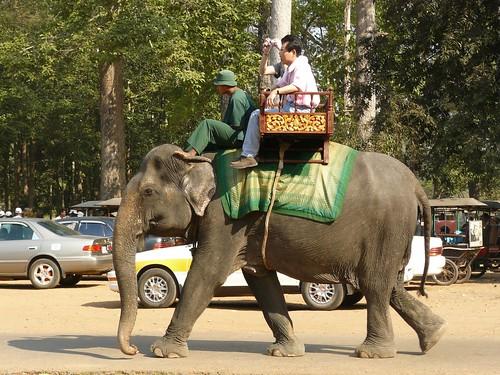 Cambodge - Angkor #39