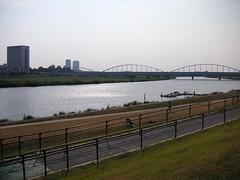 多摩川沿いを自転車で