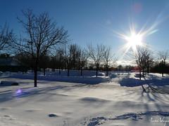 Unforgettable sun and unforgettable moments (.Alejandro_Vega) Tags: winter sun snow tree sol arbol montreal horizon nieve invierno horizonte ilovemypic thatsbostin