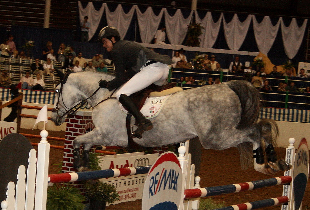 Show Jumping 002