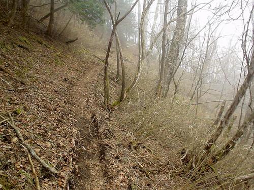 雲取山~長沢背稜