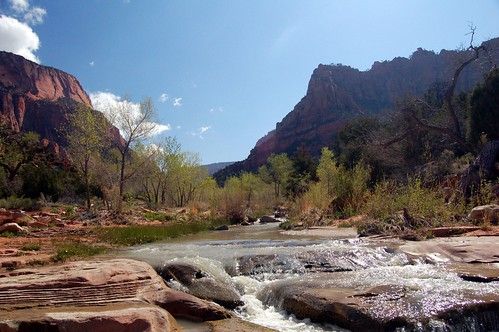 La Verkin Creek in Kolob Canyon