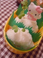 Spicy Tuna Onigiri (bunbunlife) Tags: hello kitty sanrio gingham onigiri daikon bento spicy tuna sprout
