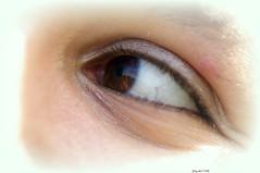 Olhar em macro (pqueirozribeiro) Tags: brazil brasil aficionados pentaxsmc pentaxk110d smcpfa100mmf28 justpentax aficinonados