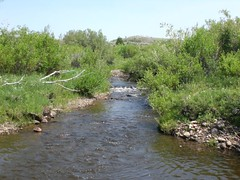 River on the Walker Ranch - 1