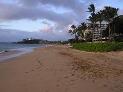 P1010359 (RaySorin) Tags: hawaii april2005