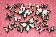 Butterfly Cookies (ConsumedbyCake) Tags: pink blue black cookies butterfly lemon perfect butterflies decorated royalicing theperfectpinkdiamond