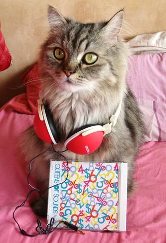 Jam love QOS Compilation Vol.1