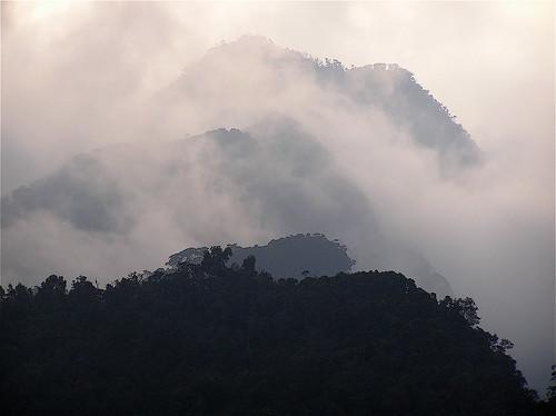 Rwenzori's Mist 1 by Xevi V.