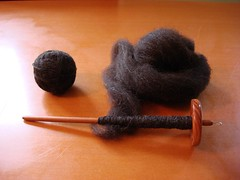 spinning - brown shetland
