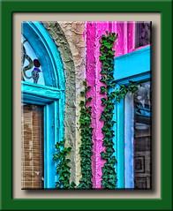 Bar Graph (Okie Dan) Tags: pink blue windows oklahoma vines beige stainedglass okc stucco paseodistrict canonxsi