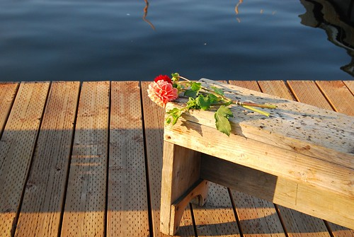 Flowers on the pier