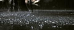 (jmbosch) Tags: lluvia agua gotas colorescolours ltytr2 ltytr1 ltytr3
