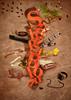 SaharaBlond-3D-03-72Dpi Just an experiment