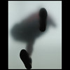 footstep (Dreamer7112) Tags: nyc newyorkcity ny newyork feet apple silhouette walking nikon pattern manhattan soho steps silhouettes applestore midtown explore step silueta dictionary siluetas i♥ny walkin princest silhueta princestreet d300 silhuetas novaiorque dreamer7112 mywinners artlibre artelibre sohony foostep artlibres نيويورك nikond300 ньюйорк kubrickslook clipcook thatscreativity applecatwalk milobaumgartner walkingclasshero