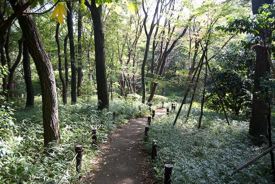 kitanomura park_0141