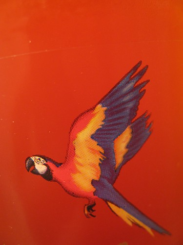 Parrot on Red