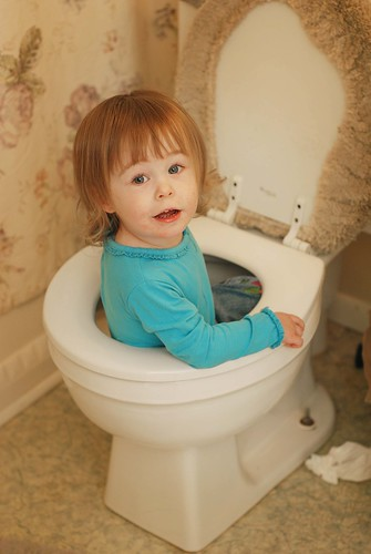 {P} has decided the toilets are really jacuzzis. by you.