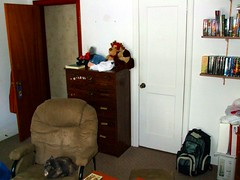 My wardrobe and the door to my room.