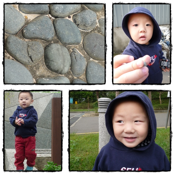 Chandler with rocks
