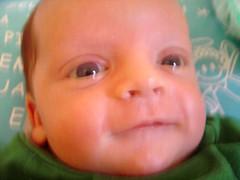 Sorrindo... ou quase (paidobernardo) Tags: ou quase sorrindo