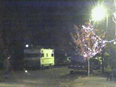 street light, fall tree, RV