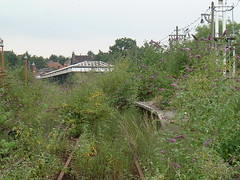 Last Days of Addiscombe - platform & canopy (rcarpe2) Tags: