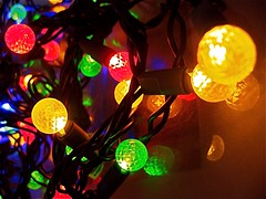 LED Christmas light jungle (SmartAnnie (Away)) Tags: macro jungle ledchristmaslights anawesomeshot