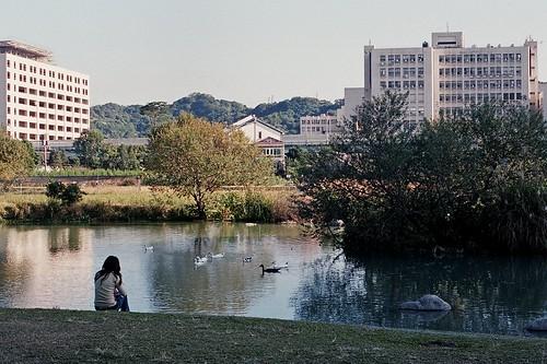風景 - The scenery.