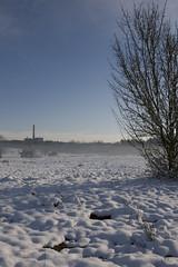 24-70 2.8 am Hainberg (crosathorian) Tags: schnee winter ef247028l hainberg