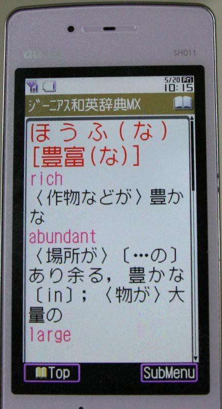 IMG_0269-1