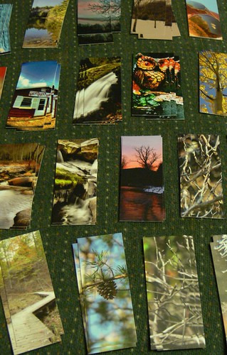 Moo Cards #56