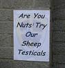 Nuts (Watt_Dabney) Tags: city wales football sheep cardiff nuts testicles bluebirds ninian