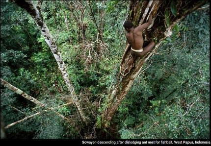28 imágenes sorprendentes de un pueblo que aún vive en los árboles | Tree People por George Steinmetz ceslava 4