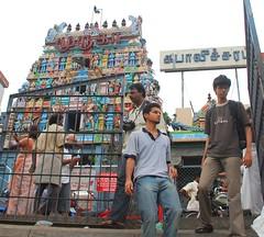 The Seventh Chennai Photowalk (Velachery Balu) Tags: tank photowalk kulam mylai velacherybalu mylapore thechennaiphotowalk theseventhchennaiphotowalk