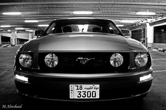 Mustang in Black & White (Mishari Al-Reshaid Photography) Tags: nightphotography blackandwhite bw white black cars ford car night photoshop canon reflections eos american kuwait mustang gt blacknwhite fordmustang canoneos photoshopcs2 sportscar sportscars q8 carphotos carphotography americancars canonef24105f4l gtm americancar carphoto canoncamera canonphotos canoneflens imagestabilizer americanmuscle q80 canonllens 40d ef24105 mishari canonef24105f4lis aplusphoto kuwaitphoto kuwaitphotos canoneos40d canon40d kuwaitcars kvwc excapture kuwaitartphoto gtmq8 kuwaitart kuwaitvoluntaryworkcenter kuwaitvwc grendizer99 kuwaitphotography grendizer99photos misharialreshaid malreshaid misharyalrasheed