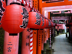 Red lanterns, red torii - Fushimi Inari