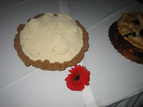 Knitted Pie